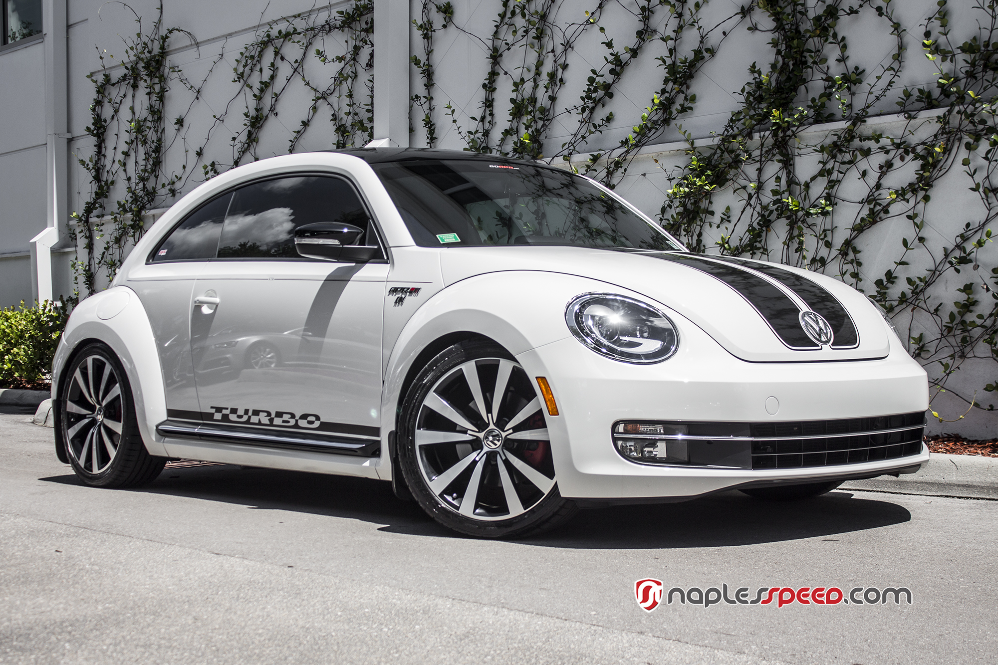 Volkswagen Beetle Naples Speed 6 Advanced Automotive Accessories